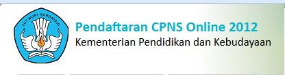 PENERIMAAN CPNS ONLINE 2013